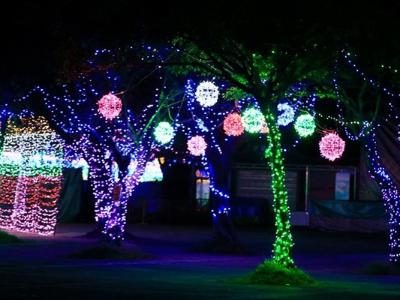 景观树照明亮化