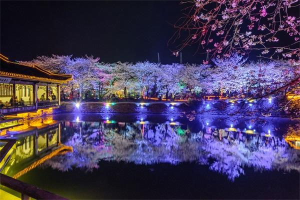 水景观照明设计