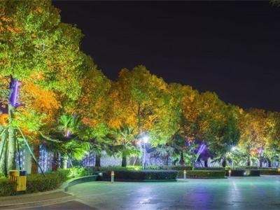 城市园林亮化