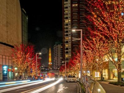 街道亮化工程-突出灯光效果的个性化