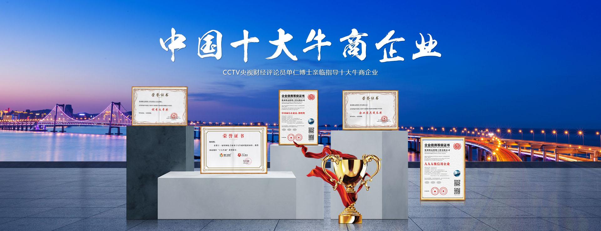 中国十大牛商企业,亮化工程公司