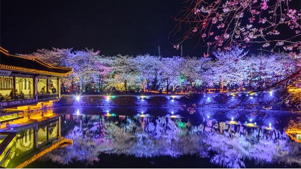 园林照明设计由单一向多元化发展