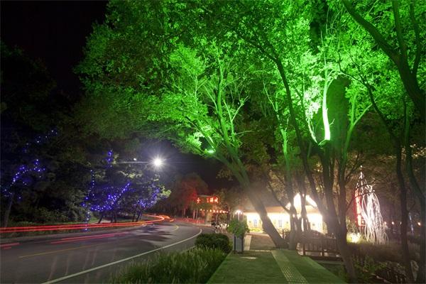 园林灯光亮化设计