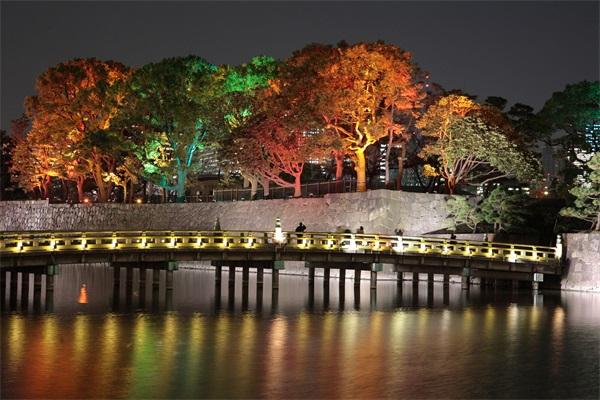 公园夜景亮化设计