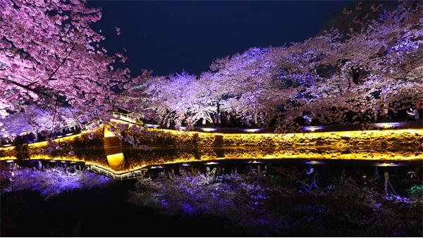 城市景观照明要达到合二为一的效果
